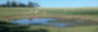la campagne heuquevillaise